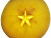 Mela|Apple